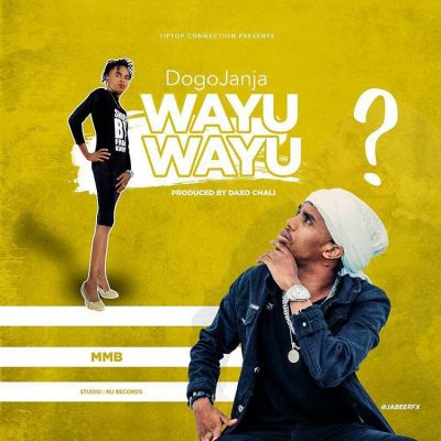 Dogo Janja - Wayu Wayu | Download mp3 Audio