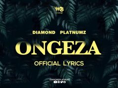 Diamond Platnumz - Ongeza (Video Lyrics) watch here.