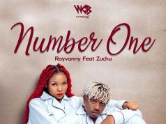 DOWNLOAD AUDIO Rayvanny Ft Zuchu - Number One