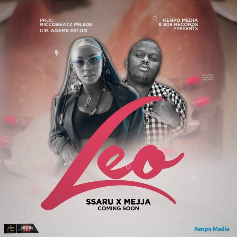 Download Audio Ssaru & Mejja - Leo