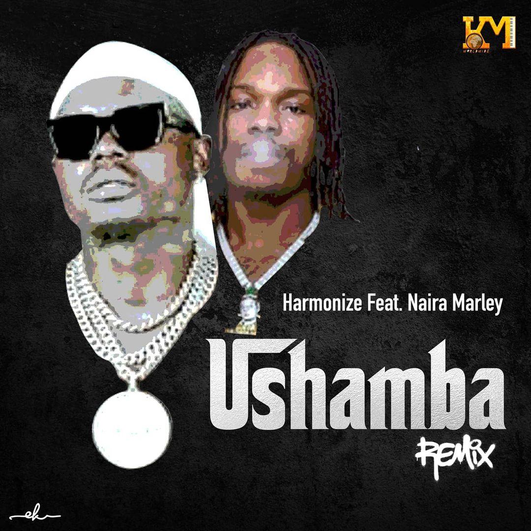 Harmonize Ft Naira Marley - Ushamba Remix