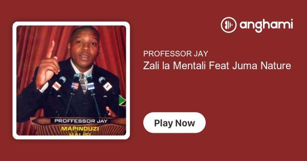 Professor Jay Ft Juma Nature - Zali La Mentali